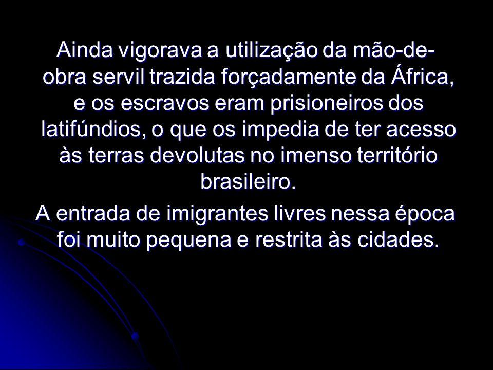 Ainda vigorava a utilização da mão-de-obra servil trazida forçadamente da África, e os escravos eram prisioneiros dos latifúndios, o que os impedia de ter acesso às terras devolutas no imenso território brasileiro.