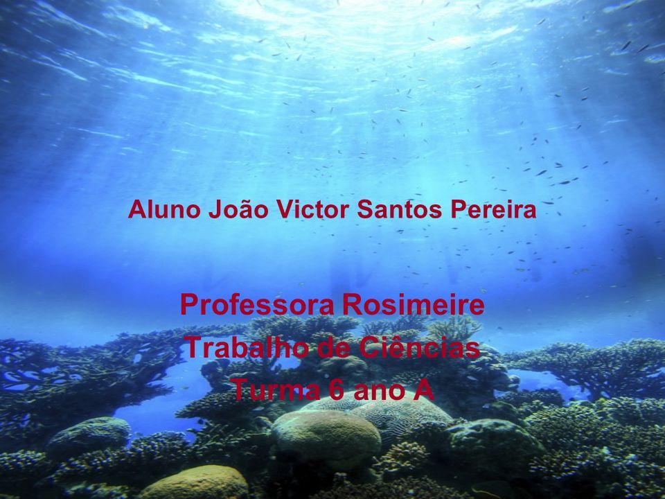 Aluno João Victor Santos Pereira