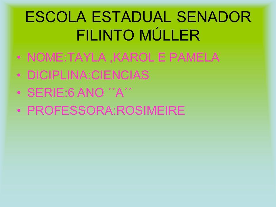 ESCOLA ESTADUAL SENADOR FILINTO MÚLLER