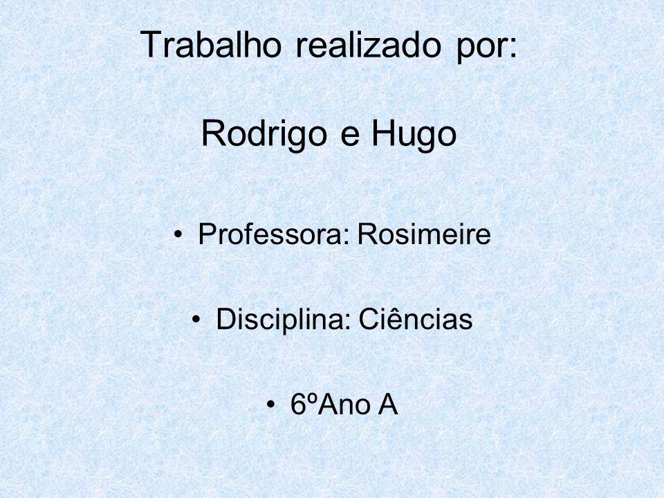 Trabalho realizado por: Rodrigo e Hugo