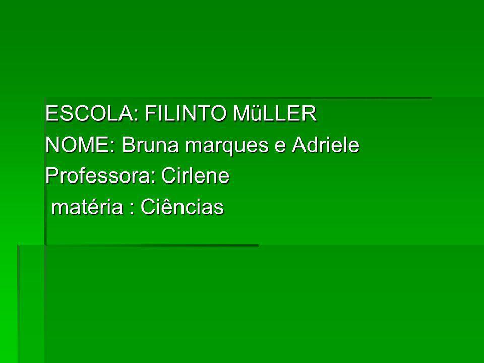 ESCOLA: FILINTO MüLLER