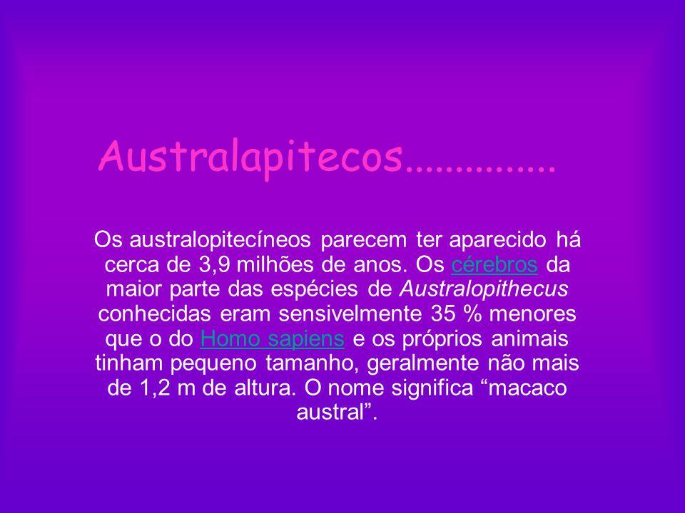 Australapitecos...............