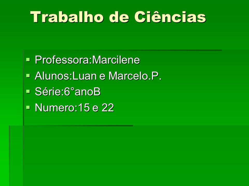 Trabalho de Ciências Professora:Marcilene Alunos:Luan e Marcelo.P.