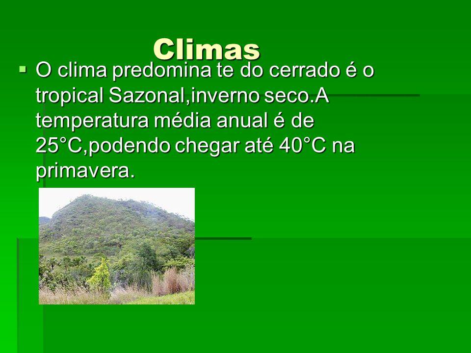 Climas O clima predomina te do cerrado é o tropical Sazonal,inverno seco.A temperatura média anual é de 25°C,podendo chegar até 40°C na primavera.