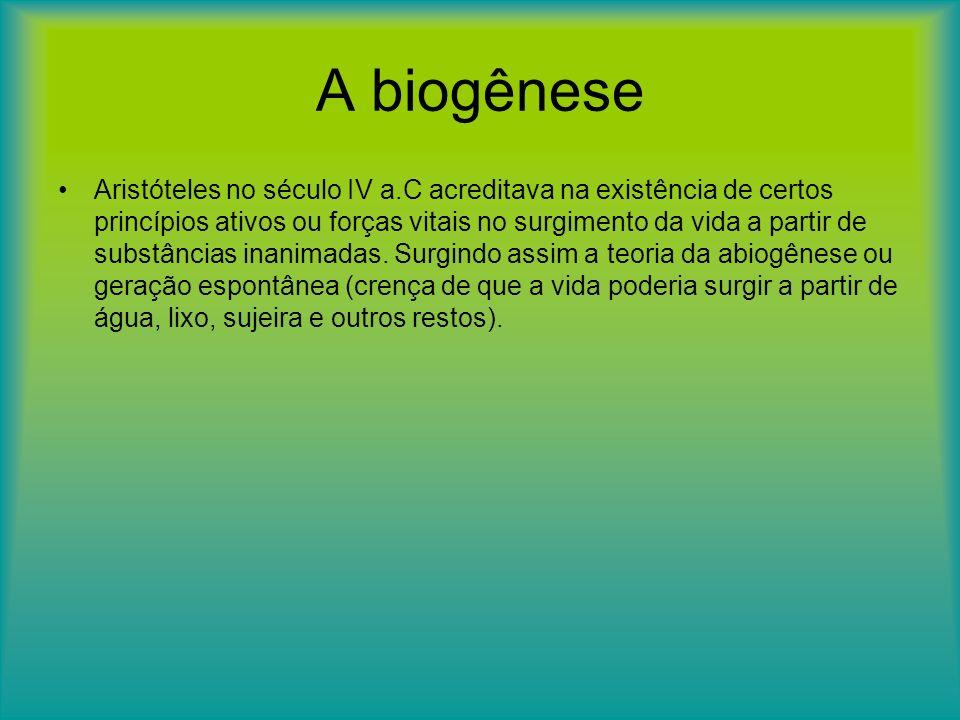 A biogênese