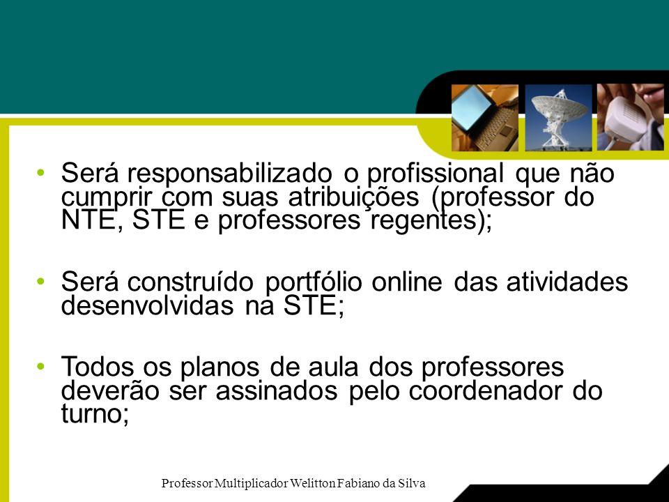 Será construído portfólio online das atividades desenvolvidas na STE;