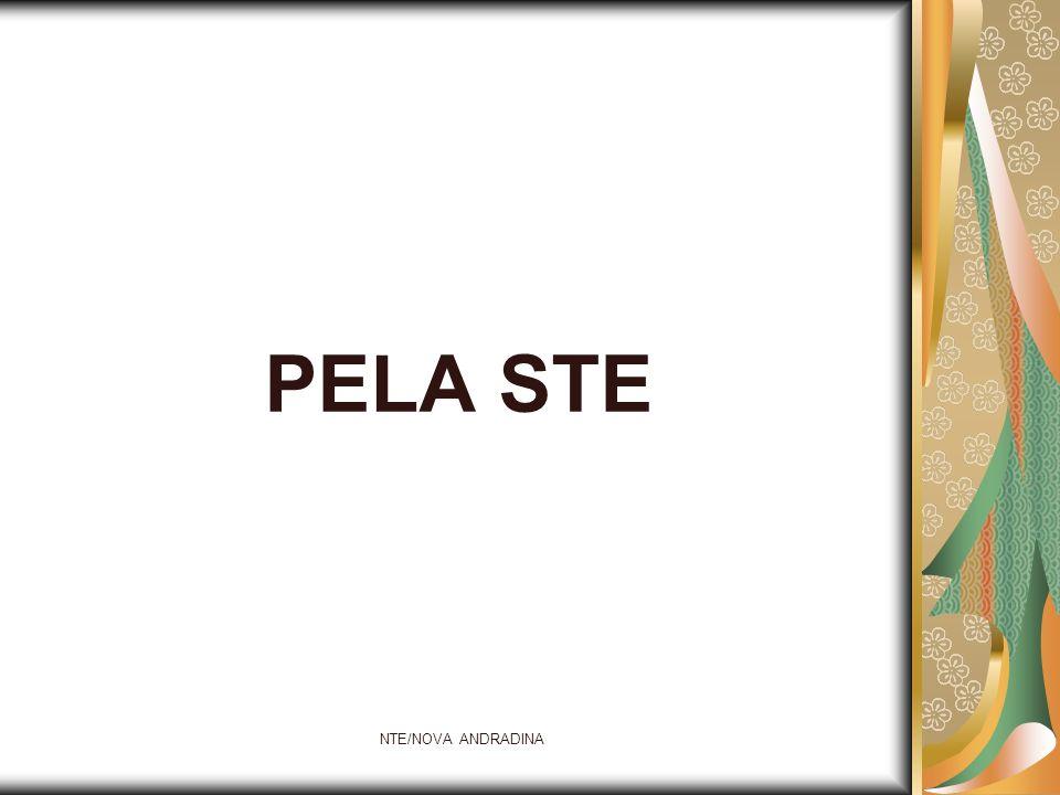 PELA STE NTE/NOVA ANDRADINA