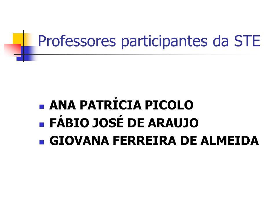 Professores participantes da STE
