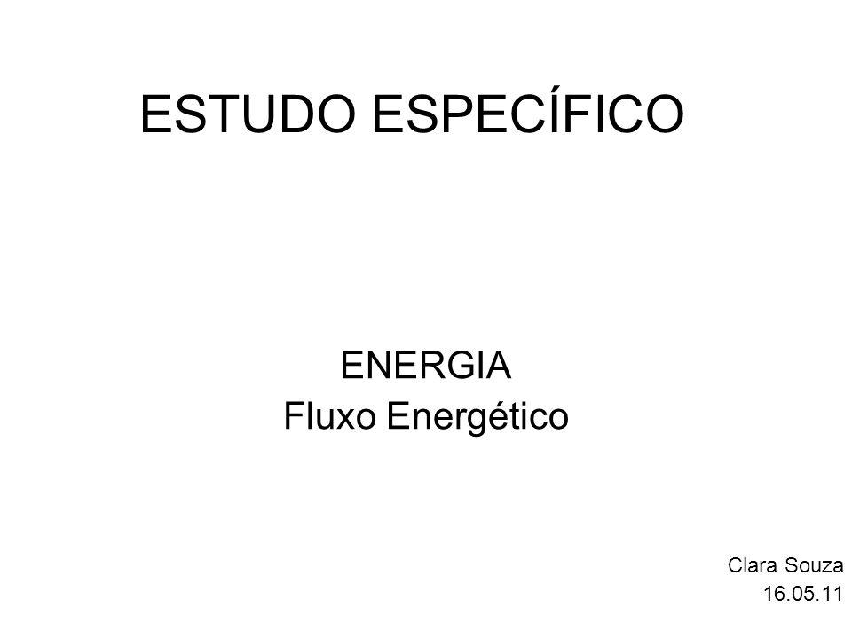 ENERGIA Fluxo Energético Clara Souza 16.05.11