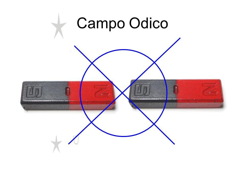 Campo Odico