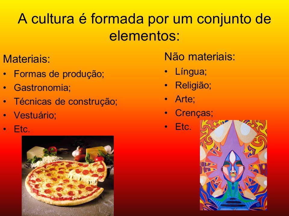 A cultura é formada por um conjunto de elementos: