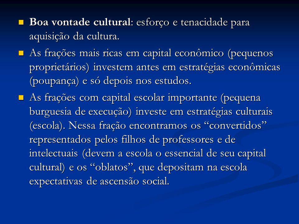 Boa vontade cultural: esforço e tenacidade para aquisição da cultura.
