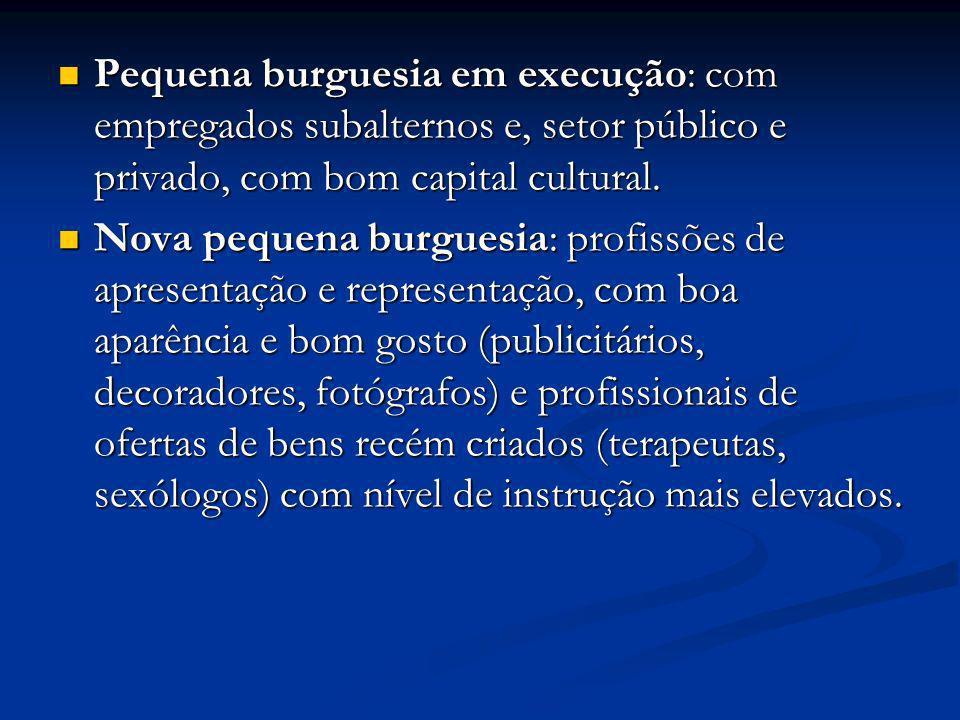 Pequena burguesia em execução: com empregados subalternos e, setor público e privado, com bom capital cultural.