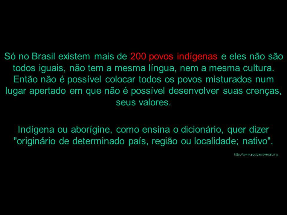 Só no Brasil existem mais de 200 povos indígenas e eles não são todos iguais, não tem a mesma língua, nem a mesma cultura. Então não é possível colocar todos os povos misturados num lugar apertado em que não é possível desenvolver suas crenças, seus valores.