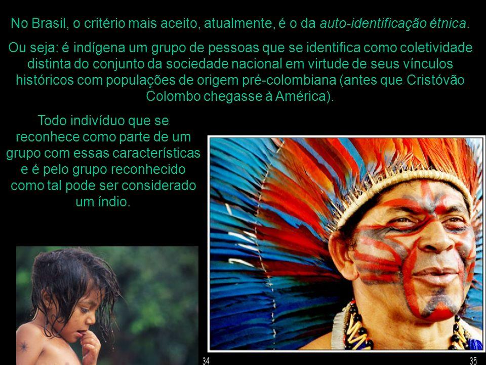 No Brasil, o critério mais aceito, atualmente, é o da auto-identificação étnica.