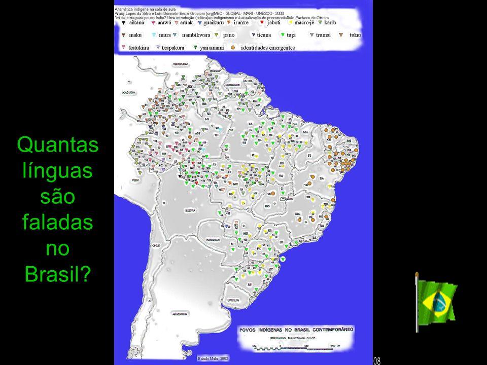 Quantas línguas são faladas no Brasil 08