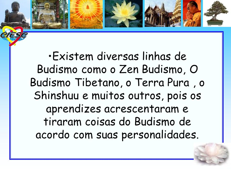 Existem diversas linhas de Budismo como o Zen Budismo, O Budismo Tibetano, o Terra Pura , o Shinshuu e muitos outros, pois os aprendizes acrescentaram e tiraram coisas do Budismo de acordo com suas personalidades.
