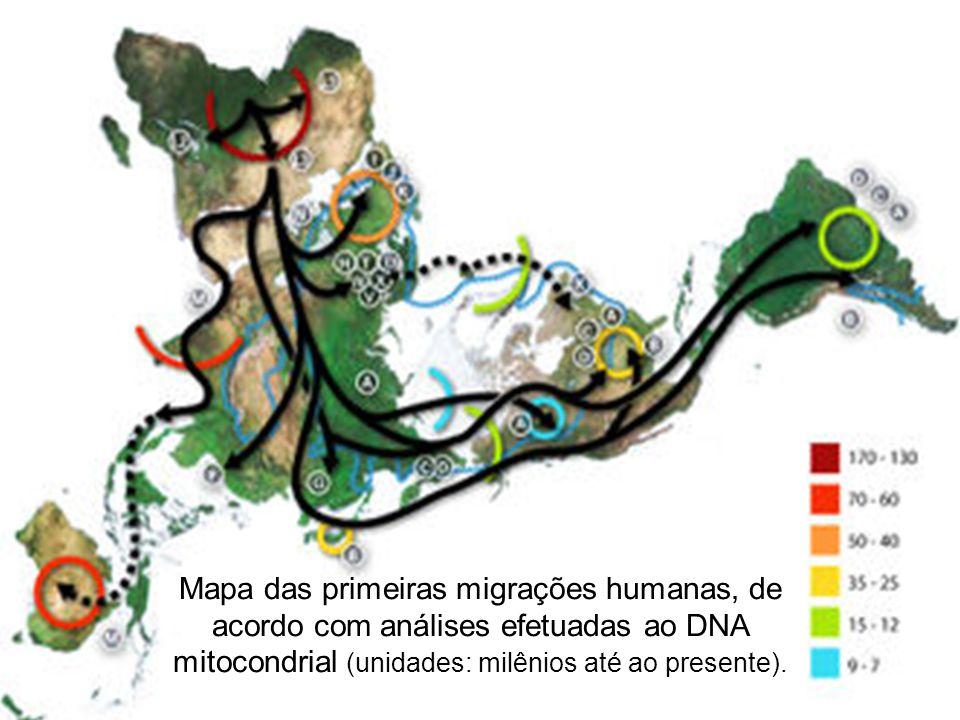 Mapa das primeiras migrações humanas, de acordo com análises efetuadas ao DNA mitocondrial (unidades: milênios até ao presente).