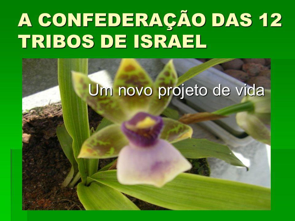 A CONFEDERAÇÃO DAS 12 TRIBOS DE ISRAEL