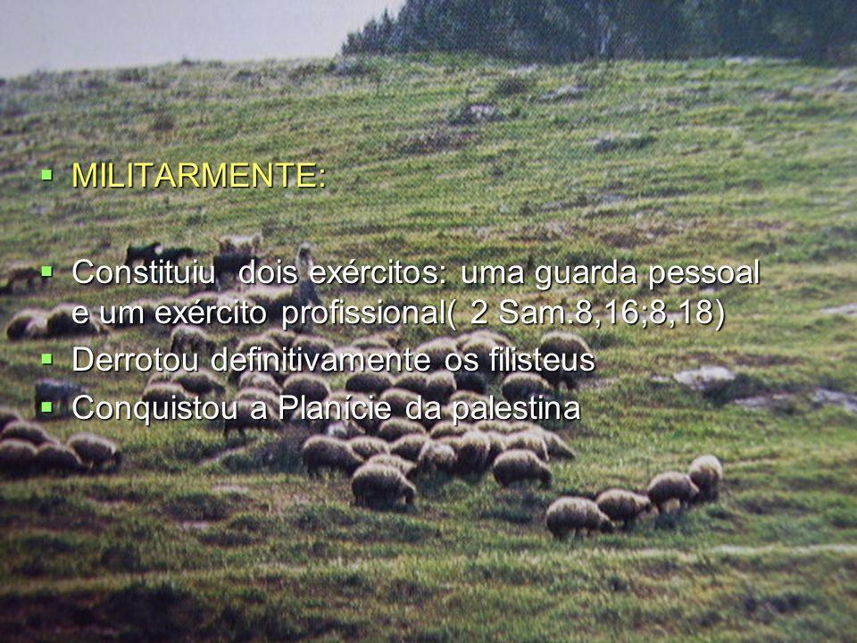 MILITARMENTE: Constituiu dois exércitos: uma guarda pessoal e um exército profissional( 2 Sam.8,16;8,18)