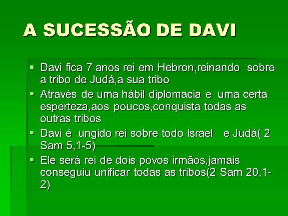 A SUCESSÃO DE DAVI Davi fica 7 anos rei em Hebron,reinando sobre a tribo de Judá,a sua tribo.