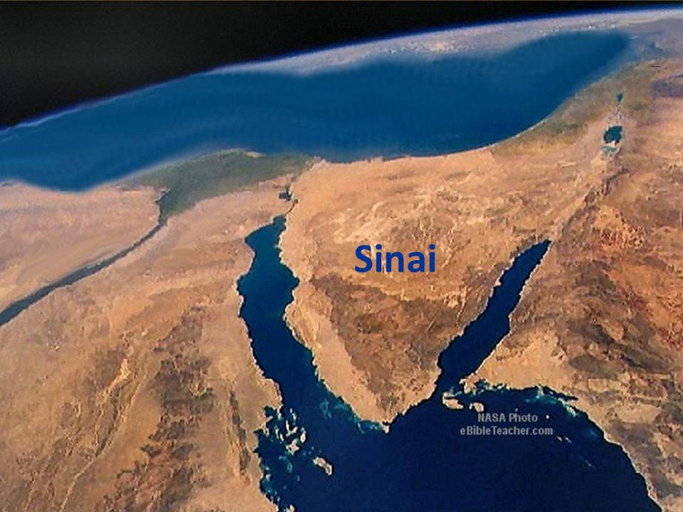 Sinai 22