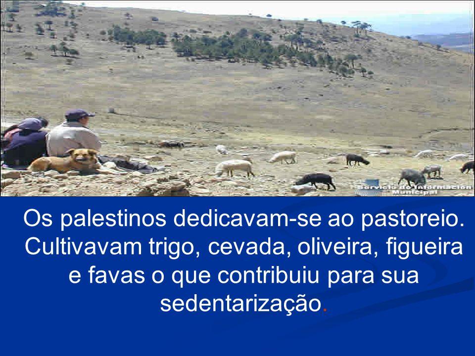 Os palestinos dedicavam-se ao pastoreio