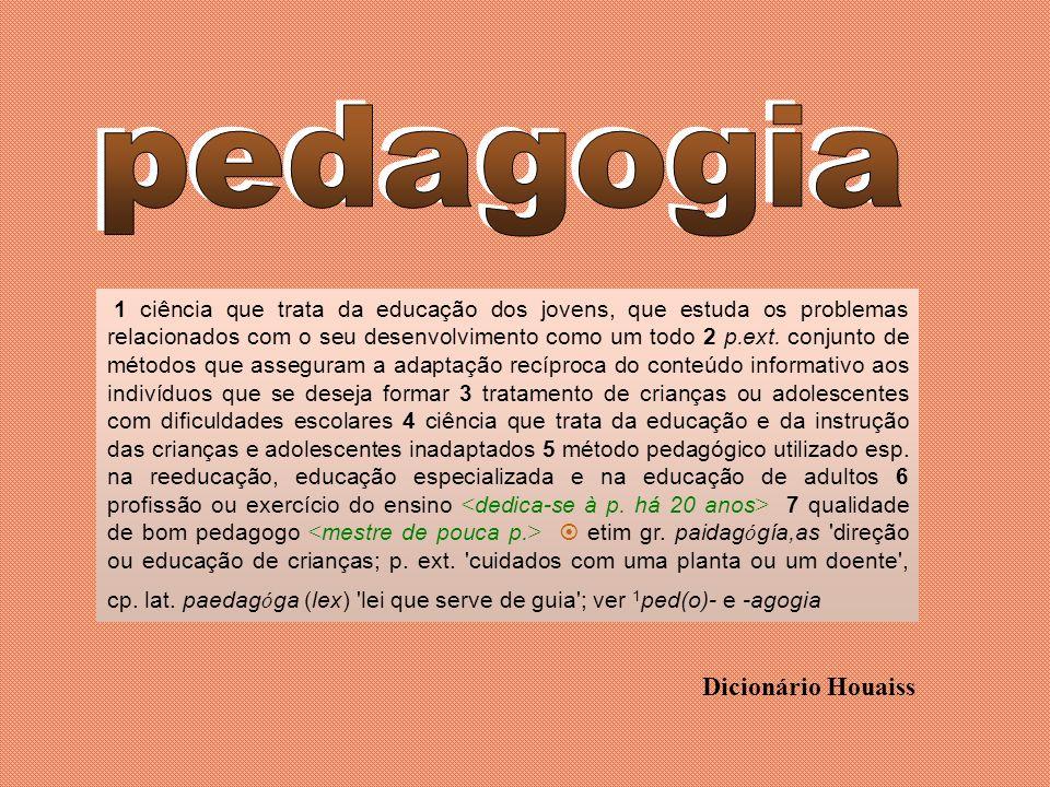 pedagogia Dicionário Houaiss