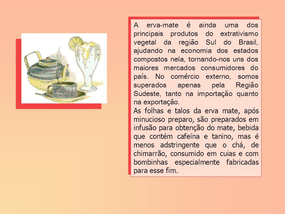A erva-mate é ainda uma dos principais produtos do extrativismo vegetal da região Sul do Brasil, ajudando na economia dos estados compostos nela, tornando-nos uns dos maiores mercados consumidores do país. No comércio externo, somos superados apenas pela Região Sudeste, tanto na importação quanto na exportação.