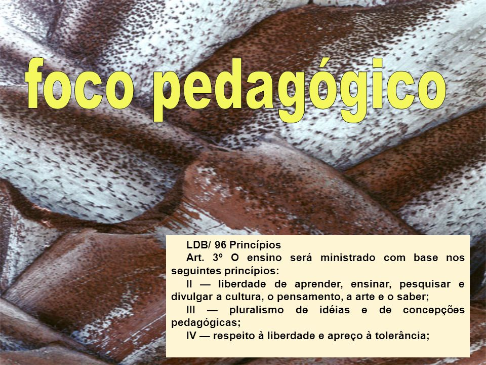 LDB/ 96 PrincípiosArt. 3º O ensino será ministrado com base nos seguintes princípios: