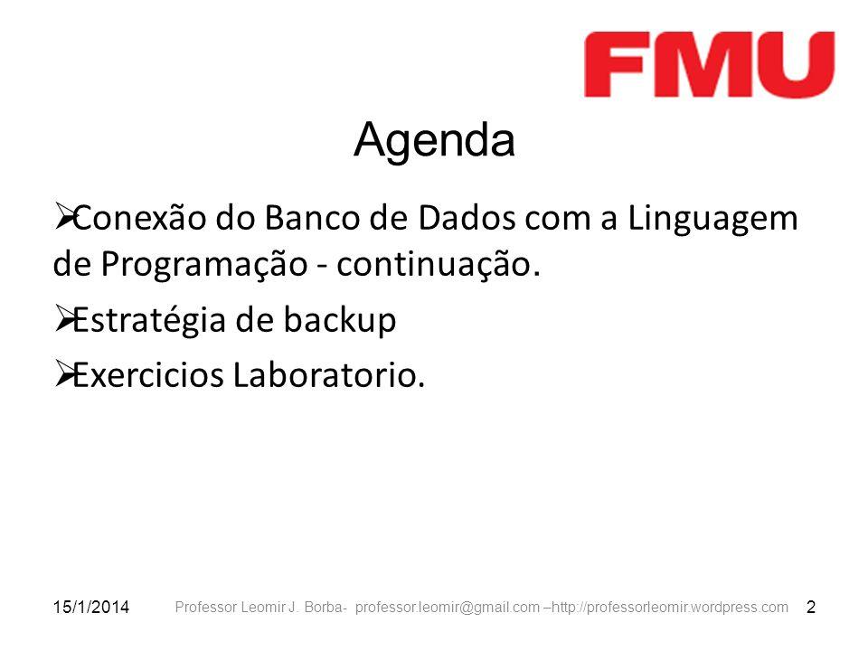 Agenda Conexão do Banco de Dados com a Linguagem de Programação - continuação. Estratégia de backup.