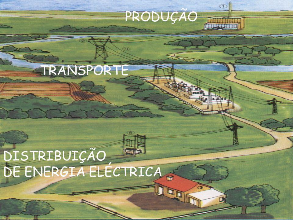 PRODUÇÃO TRANSPORTE DISTRIBUIÇÃO DE ENERGIA ELÉCTRICA