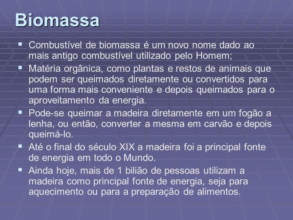 Biomassa Combustível de biomassa é um novo nome dado ao mais antigo combustível utilizado pelo Homem;