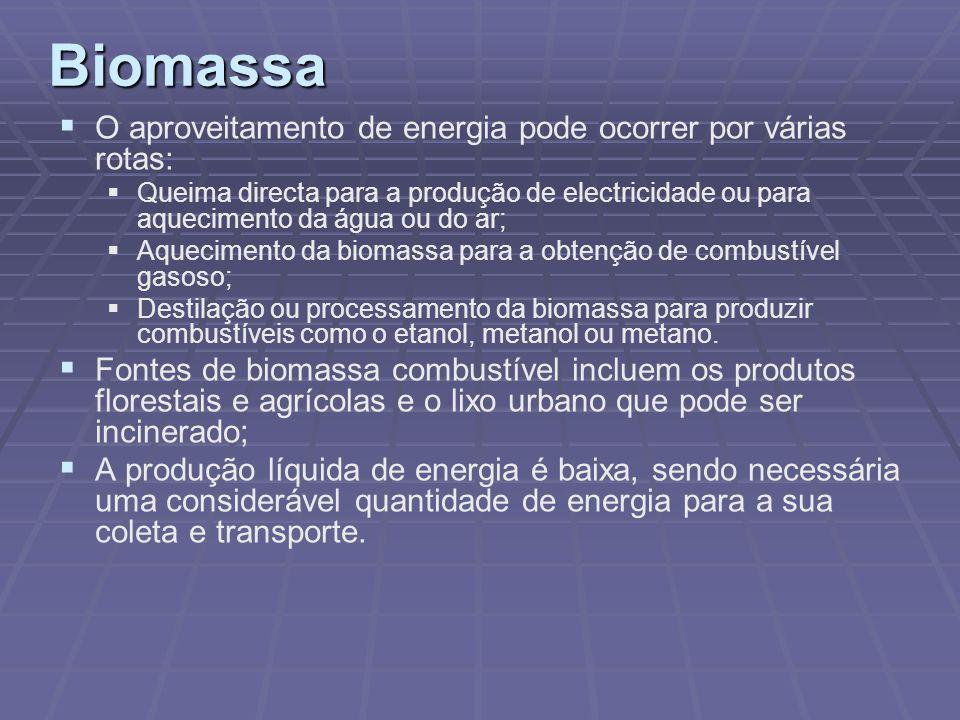 Biomassa O aproveitamento de energia pode ocorrer por várias rotas: