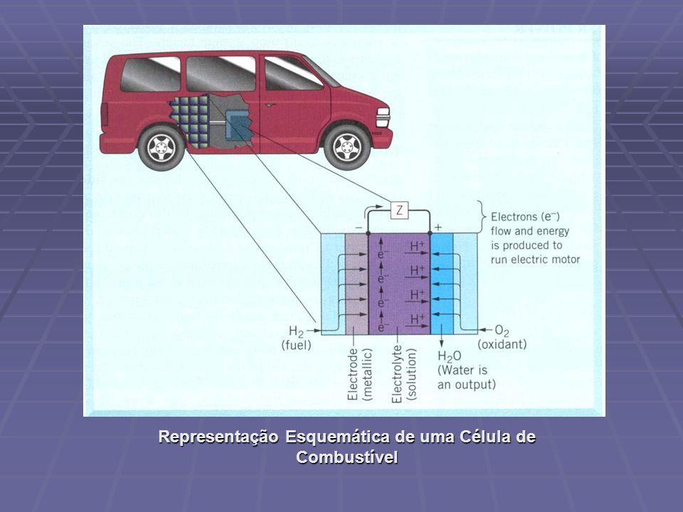 Representação Esquemática de uma Célula de Combustível