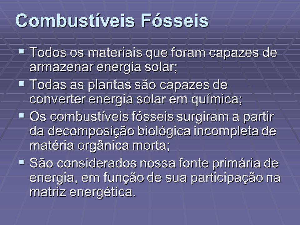 Combustíveis Fósseis Todos os materiais que foram capazes de armazenar energia solar;