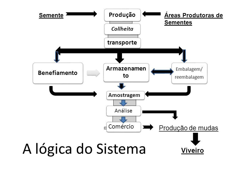 A lógica do Sistema Produção transporte Benefiamento Armazenamento
