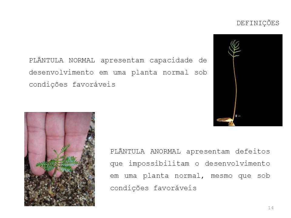 DEFINIÇÕES PLÂNTULA NORMAL apresentam capacidade de desenvolvimento em uma planta normal sob condições favoráveis.