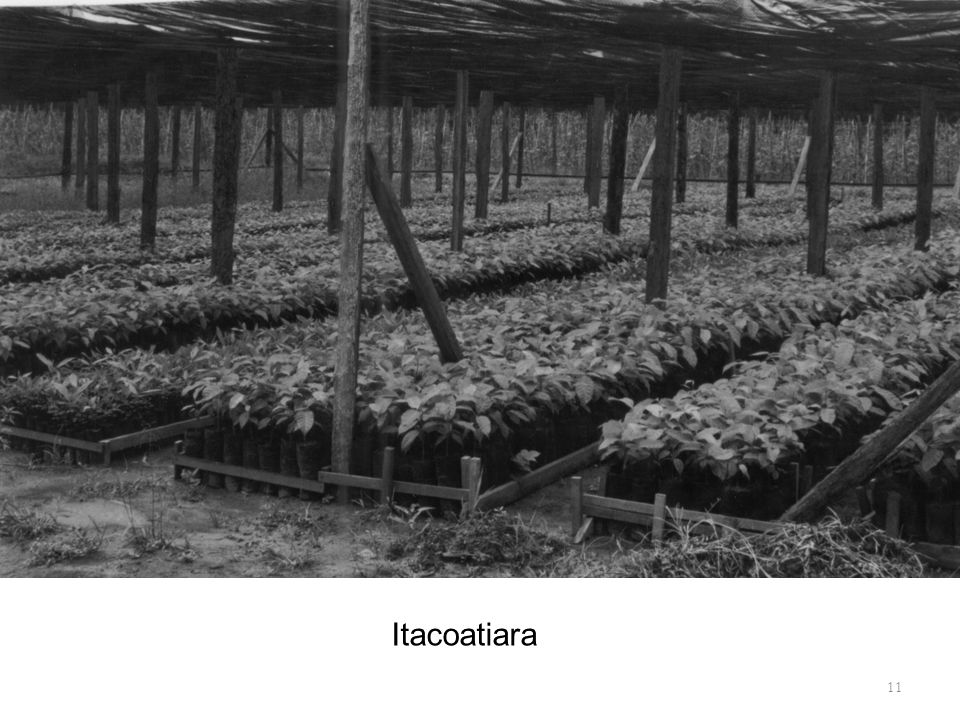 Itacoatiara