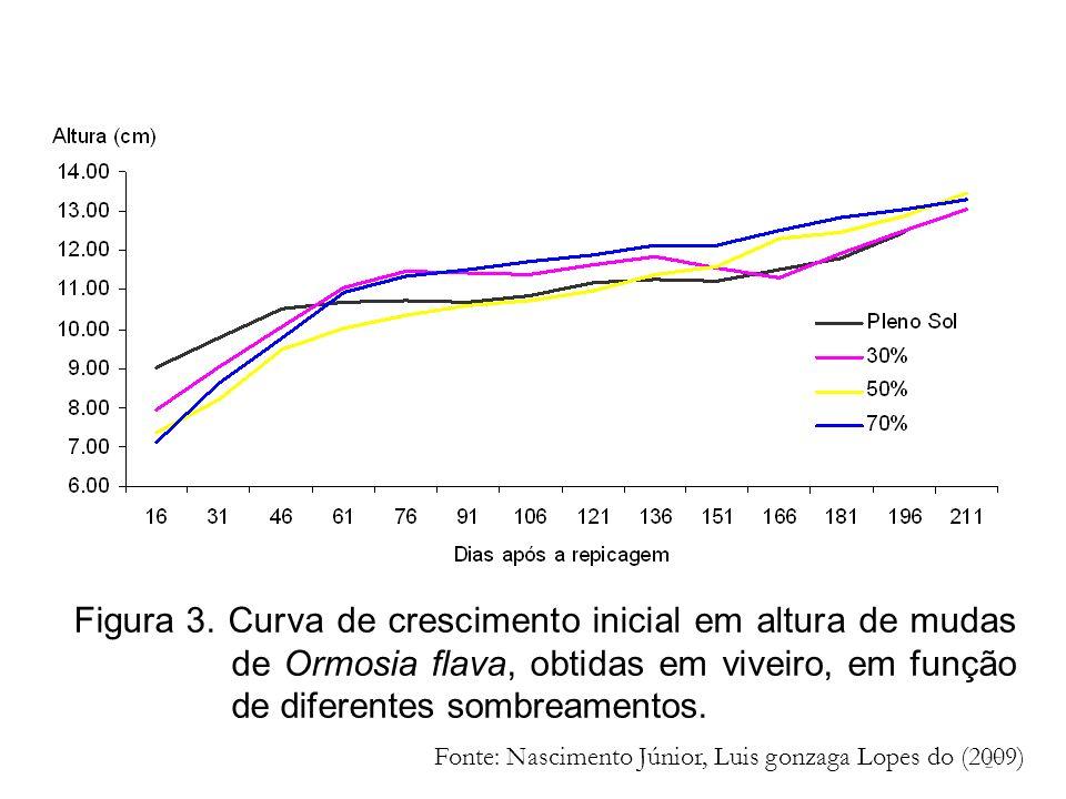 Figura 3. Curva de crescimento inicial em altura de mudas de Ormosia flava, obtidas em viveiro, em função de diferentes sombreamentos.