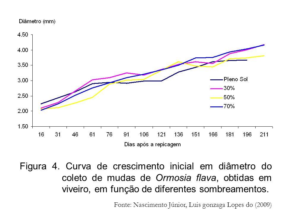 Figura 4. Curva de crescimento inicial em diâmetro do coleto de mudas de Ormosia flava, obtidas em viveiro, em função de diferentes sombreamentos.