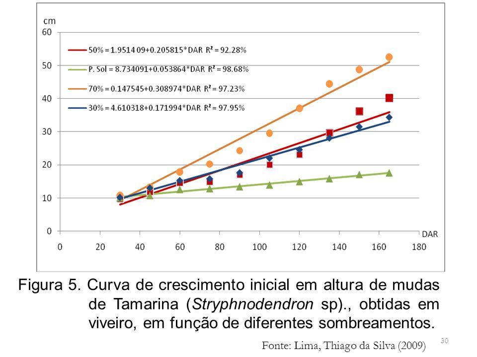 Figura 5. Curva de crescimento inicial em altura de mudas de Tamarina (Stryphnodendron sp)., obtidas em viveiro, em função de diferentes sombreamentos.