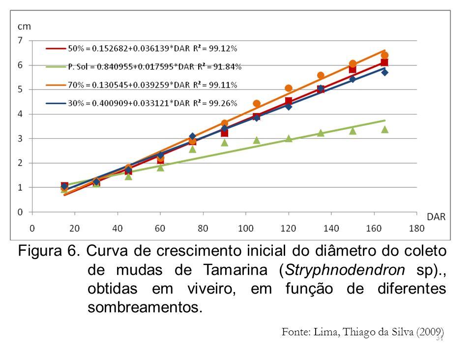 Figura 6. Curva de crescimento inicial do diâmetro do coleto de mudas de Tamarina (Stryphnodendron sp)., obtidas em viveiro, em função de diferentes sombreamentos.