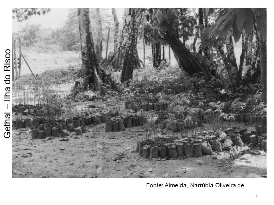 Gethal – Ilha do Risco Fonte: Almeida, Narrúbia Oliveira de