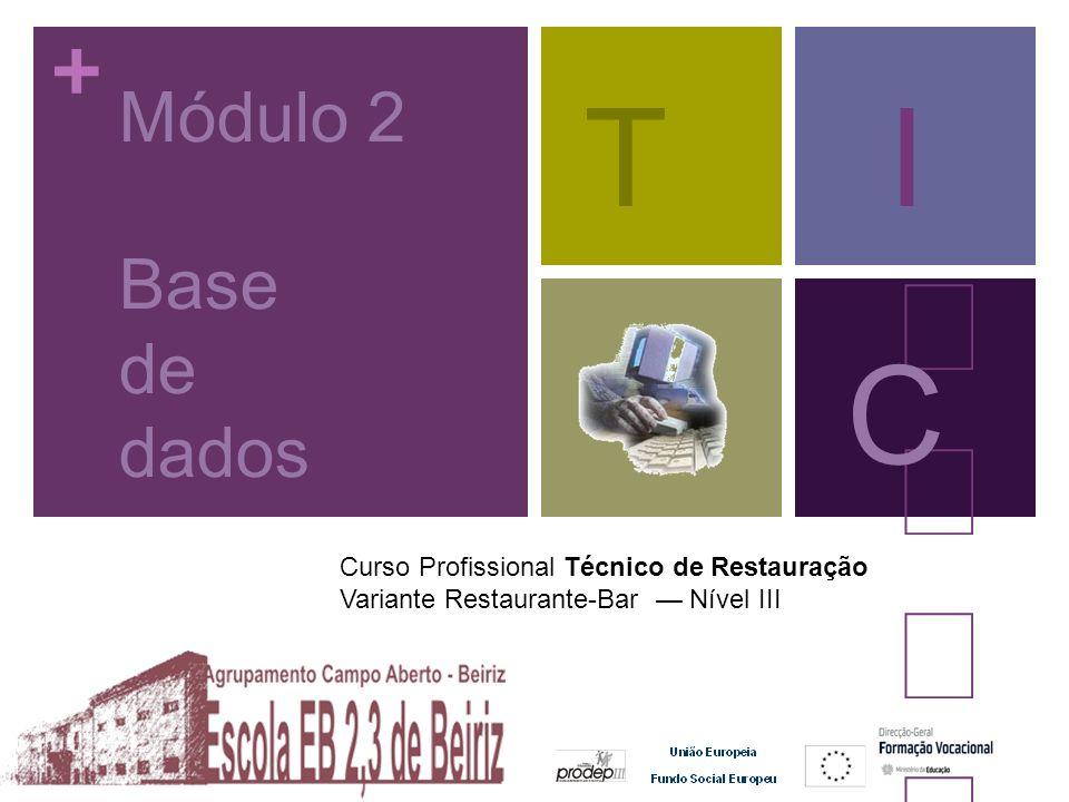 T I  C Módulo 2 Base de dados