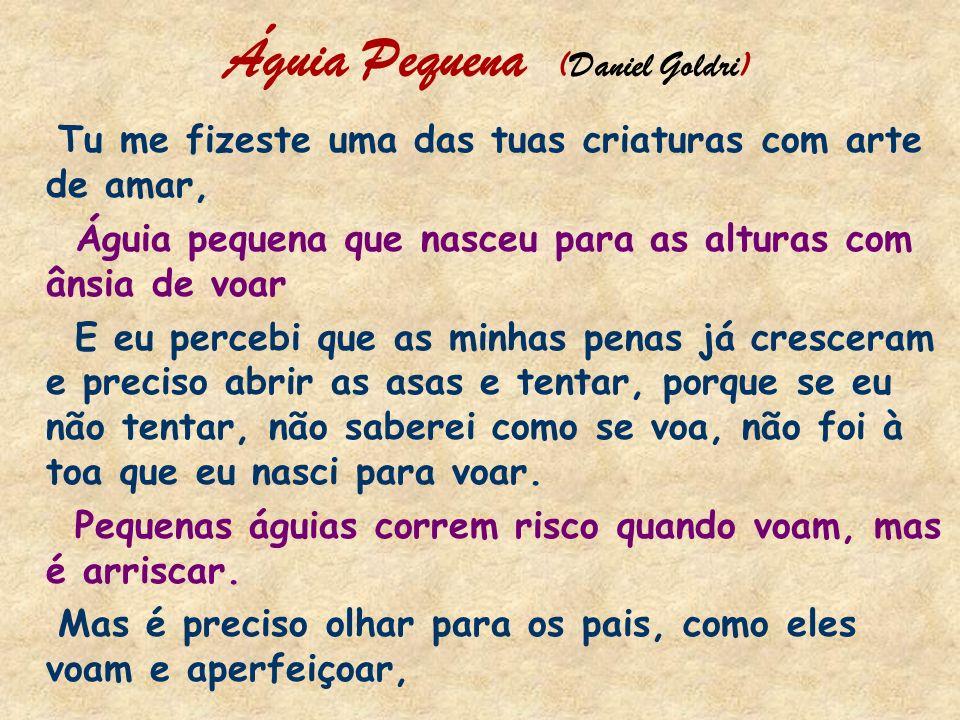 Águia Pequena (Daniel Goldri)