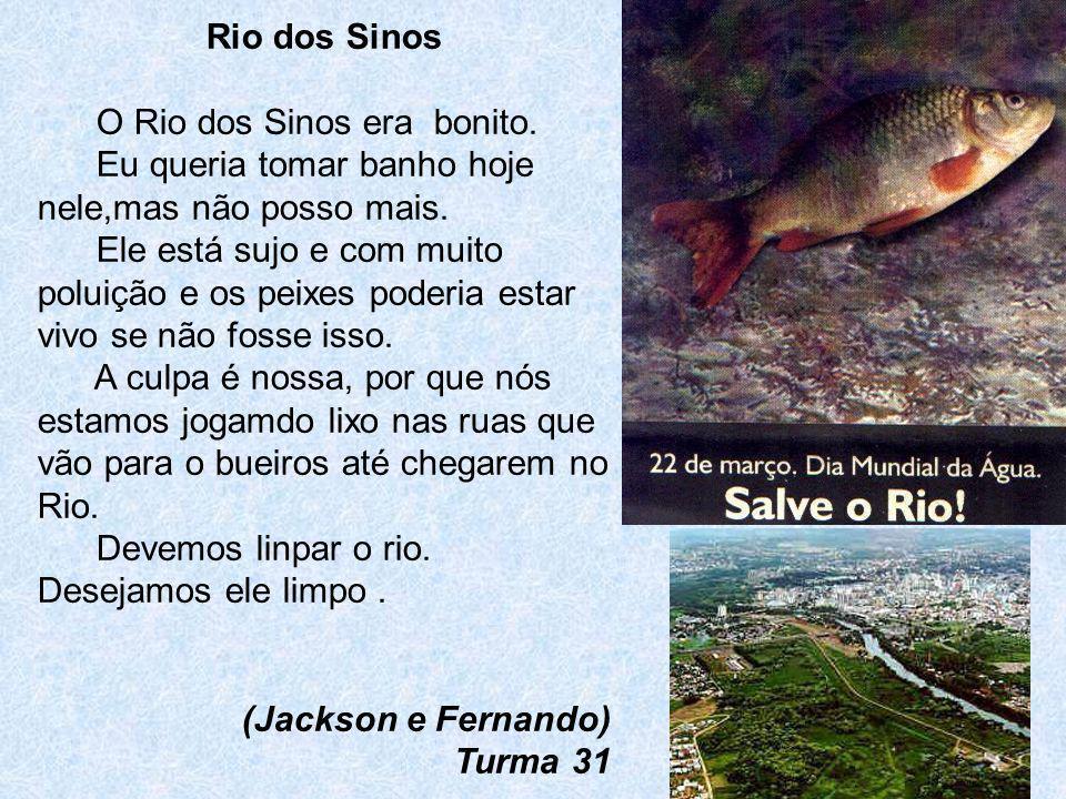 Rio dos SinosO Rio dos Sinos era bonito. Eu queria tomar banho hoje nele,mas não posso mais.