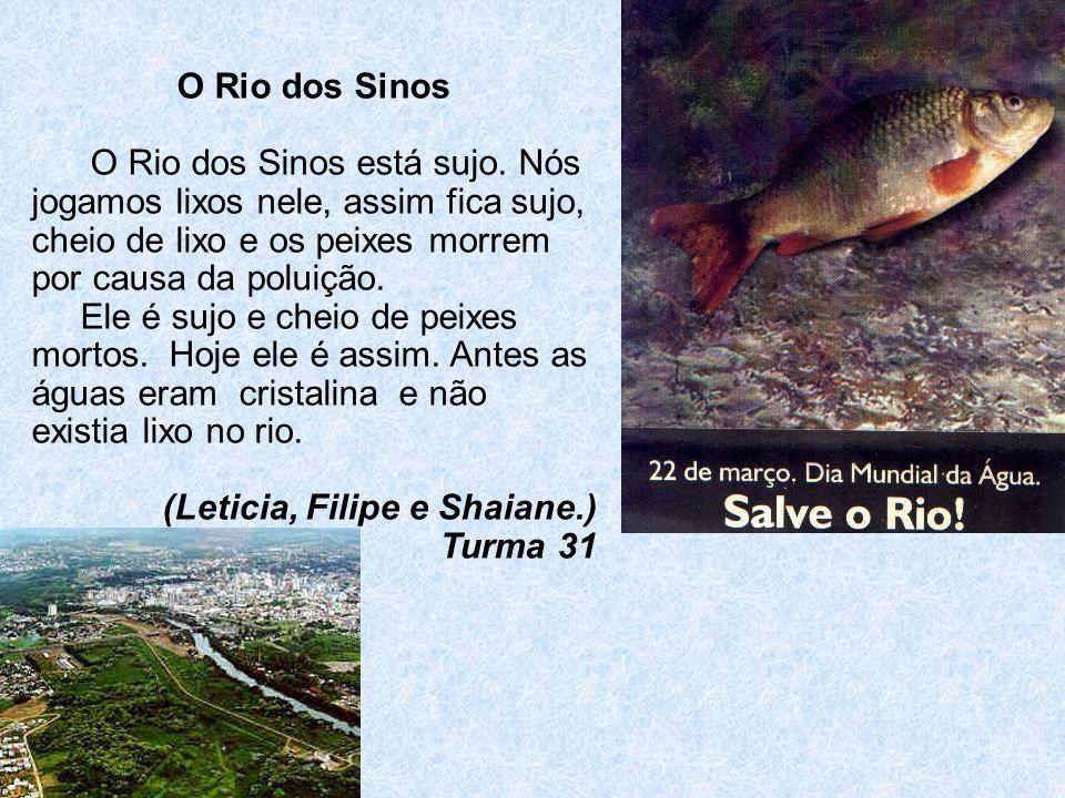 O Rio dos Sinos O Rio dos Sinos está sujo. Nós jogamos lixos nele, assim fica sujo, cheio de lixo e os peixes morrem por causa da poluição.