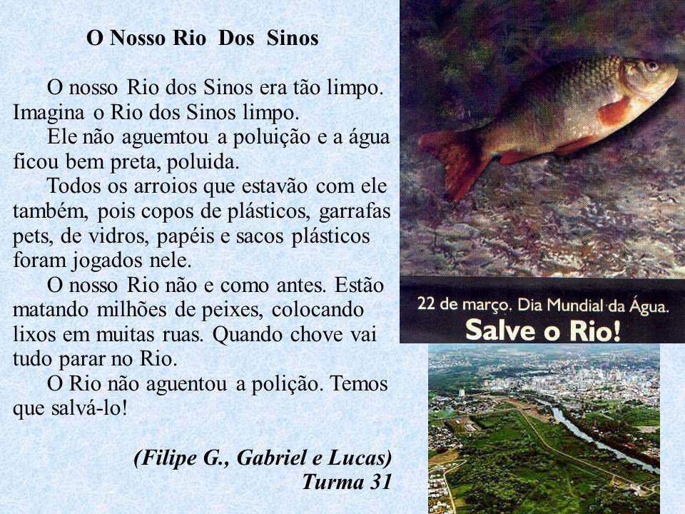 O Nosso Rio Dos Sinos O nosso Rio dos Sinos era tão limpo. Imagina o Rio dos Sinos limpo.
