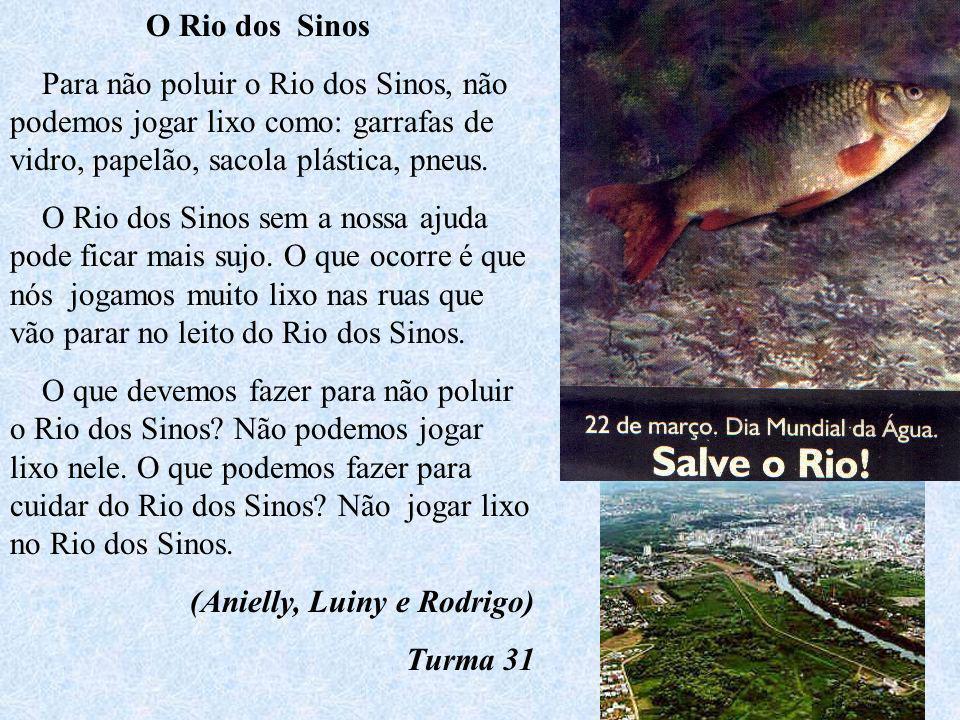 O Rio dos Sinos Para não poluir o Rio dos Sinos, não podemos jogar lixo como: garrafas de vidro, papelão, sacola plástica, pneus.